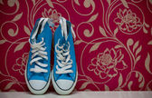 Blue gumshoes — Stock Photo