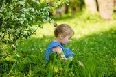 Adorable petite fille assise dans l'herbe sous apple florissant — Photo