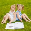 Two little girls lying on the grass outdoors reading a book. The — Stock Photo #49926727