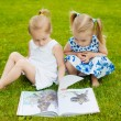 Two little girls lying on the grass outdoors reading a book. The — Stock Photo #49926741