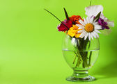 Flowers in a glass green — Stock Photo