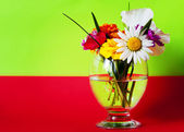 Flowers in a glass red green — Stock Photo