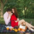 Beautiful Young Couple Having Picnic in Countryside. Happy Family Outdoor. Smiling Man and Woman relaxing in Park. Relationships — Stock Photo #47372535