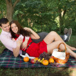 Beautiful Young Couple Having Picnic in Countryside. Happy Family Outdoor. Smiling Man and Woman relaxing in Park. Relationships — Stock Photo