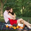 Beautiful Young Couple Having Picnic in Countryside. Happy Family Outdoor. Smiling Man and Woman relaxing in Park. Relationships — Stock Photo #47372561