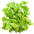 Lettuce bunch — Stock Photo #47359863