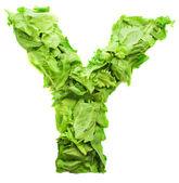 Y lettuce letter — Stock Photo