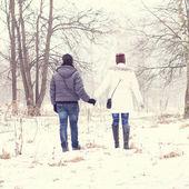 Para trzymając się za ręce w winter park — Zdjęcie stockowe