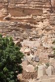 Dogon village, Mali (Africa) — Stock Photo