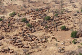 Aerial view of a Dogon village, Mali (Africa). — Stock Photo