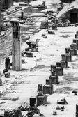 Colonne superstite di un antico monumento nel foro romano. — Foto Stock