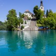 Bled island with its steep staircase, Lake Bled, Slovenia. — Stock Photo #49371379