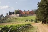 Brolio Castle and the nearby vineyards — Stock Photo