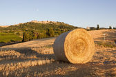 Bale of hay, in the background Montepulciano — Stock Photo