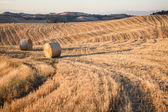 Hay bales and rolling landscape at sunset, Tuscany, Italy — Stock Photo
