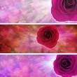 Love hearts and rose website banners — Stock Photo #47828411