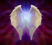 Angel Wings and Universal Spiral — Stock Photo