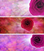 Love hearts and rose website banners — Stock Photo
