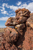 Petrified Forest National Park, Arizona, USA — Stock Photo