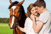 Loving beautiful couple of guys and girls in the field walk on horses — Stock Photo