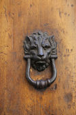 Door knob with animal head — Stock Photo