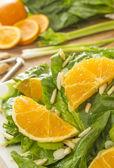 Orange almond salad — Photo