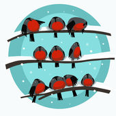Illustration of birds on a branch in the winter — Stockfoto