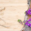 Flowers on old bark, rustic — Stock Photo #49822375