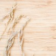 Spikelets on light yellow board — Stock Photo #49822387