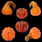 Set of pumpkins, Halloween — Stockfoto