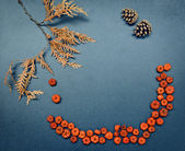 Autumn fall frame, pumpkins, cones, leaves — Foto Stock