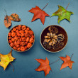 Fall, pumpkins, cones, maple leaves — Stock Photo