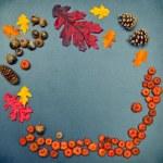 Fall frame, pumpkins, cones, acorn, oak leaves — Stock Photo #51019973