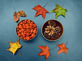 Fall, pumpkins, cones, maple leaves — Стоковое фото