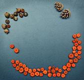 Autumn frame, pumpkins, cones, acorn — Photo
