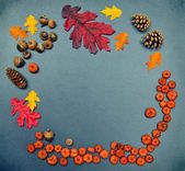 Fall frame, pumpkins, cones, acorn, oak leaves — Stock Photo