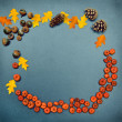 Fall frame, pumpkins, cones, acorn, leaves — Stock Photo #51020003