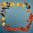 Fall frame, pumpkins, cones, acorn, leaves — Stock Photo #51020005