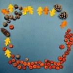 Fall frame, pumpkins, cones, acorn, leaves — Stock Photo #51020005