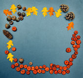 Fall frame, pumpkins, cones, acorn, leaves — Stock Photo
