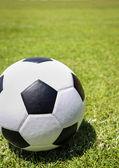 緑の芝生の上にサッカー ボール — ストック写真
