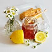 Honey — Stok fotoğraf
