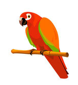 Red parrot on a perch — Stock Vector