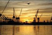 Harbor sunrise — Stockfoto