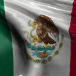 National Flag of Mexico — Stock Video #47612321