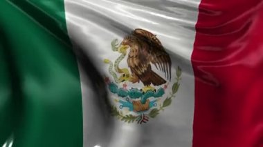 National Flag of Mexico — Stock Video