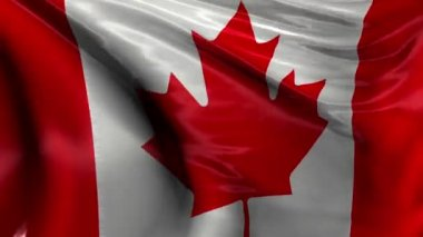 National Flag of Canada — Stock Video