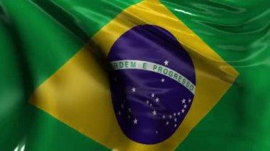 National flag of Brazil — Stock Video