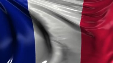 National flag of France — Stock Video
