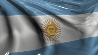 National flag of Argentina — Stock Video